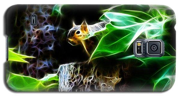 Fractal - Peek A Boo II - Robbie The Squirrel - 8242 Galaxy S5 Case