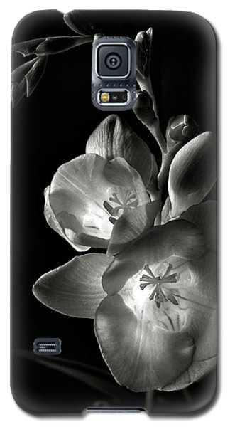 Freesia In Black And White Galaxy S5 Case