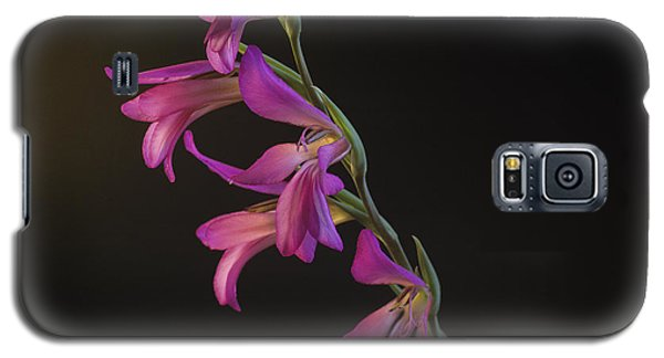 Freesia In The Spotlight Galaxy S5 Case by Susan Rovira