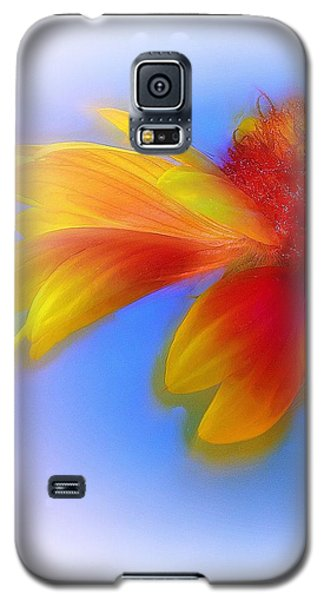Galaxy S5 Case featuring the photograph Fresh As A Daisy by Judi Bagwell