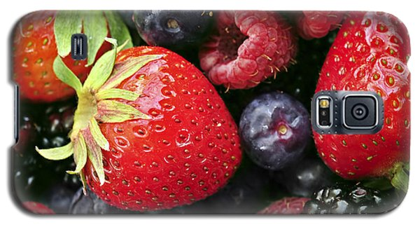 Fresh Berries Galaxy S5 Case