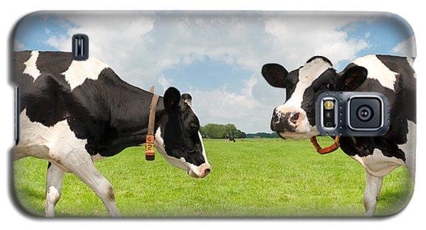 Frisian Cows Galaxy S5 Case by Hans Engbers