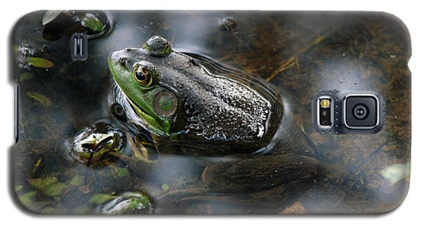 Frog In The Millpond Galaxy S5 Case