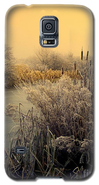Frost Galaxy S5 Case by Linsey Williams