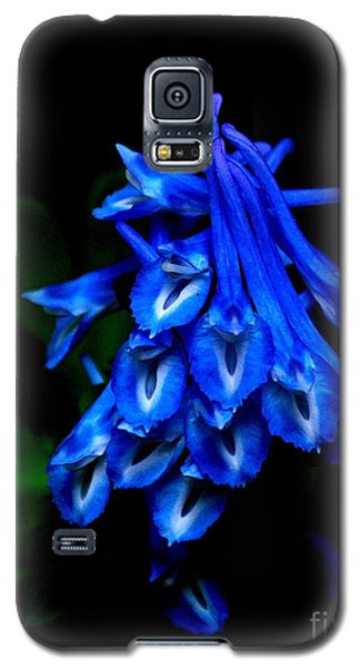 Galaxy S5 Case featuring the photograph Garden Jewel by Tanya  Searcy