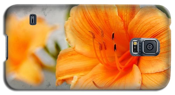 Galaxy S5 Case featuring the photograph Garden Lily by Davandra Cribbie