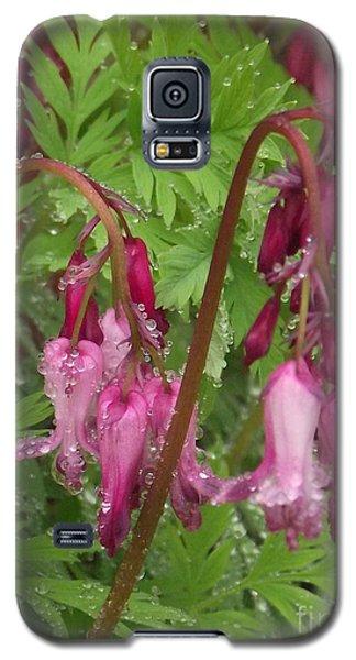 Garden Rain Drops Galaxy S5 Case