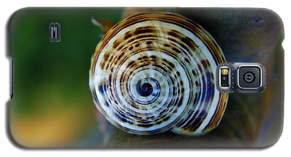 Galaxy S5 Case featuring the photograph Garden Snail On Frangipani  by Werner Lehmann