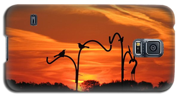 Galaxy S5 Case featuring the photograph Garden Sunrise by Tina M Wenger