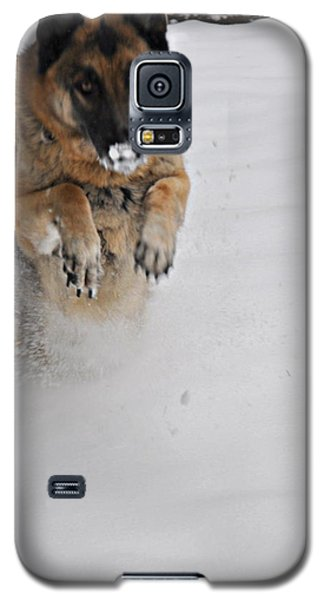 Galaxy S5 Case featuring the photograph German Shepherd In The Snow 2 by Tanya  Searcy
