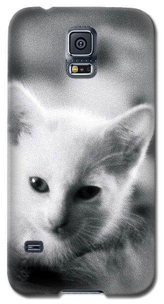 Ghost Kitties Galaxy S5 Case