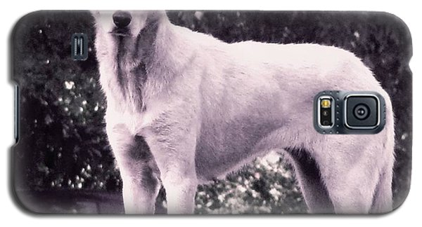 Galaxy S5 Case featuring the photograph Ghost The Wolf by Maria Urso