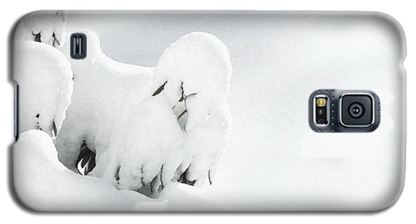 Galaxy S5 Case featuring the photograph Ghostly Snow Covered Bush by Pamela Hyde Wilson