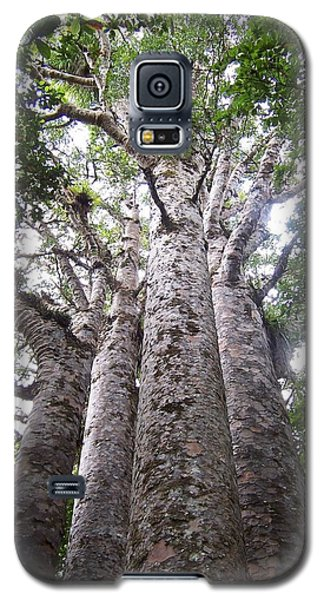 Galaxy S5 Case featuring the photograph Giant Kauri Grove by Peter Mooyman