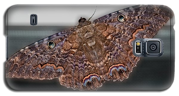 Galaxy S5 Case featuring the photograph Giant Moth by DigiArt Diaries by Vicky B Fuller