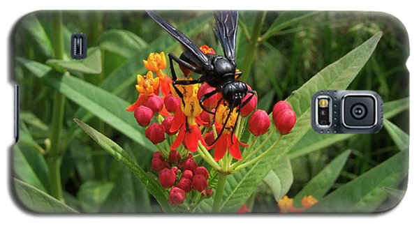 Giant Wasp Galaxy S5 Case