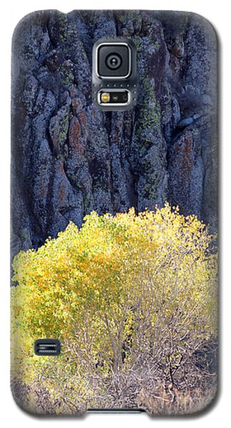 Gilded Autumn Galaxy S5 Case