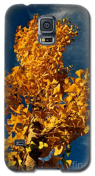 Gingko To The Sky Galaxy S5 Case