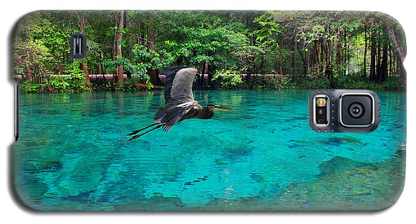 Ginnie Springs Galaxy S5 Case