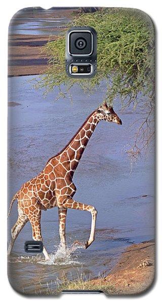 Giraffe Crossing Stream Galaxy S5 Case
