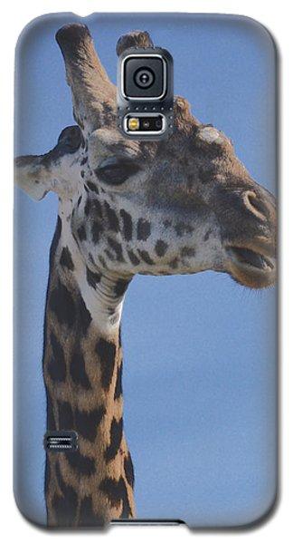 Galaxy S5 Case featuring the photograph Giraffe Headshot by Tom Wurl