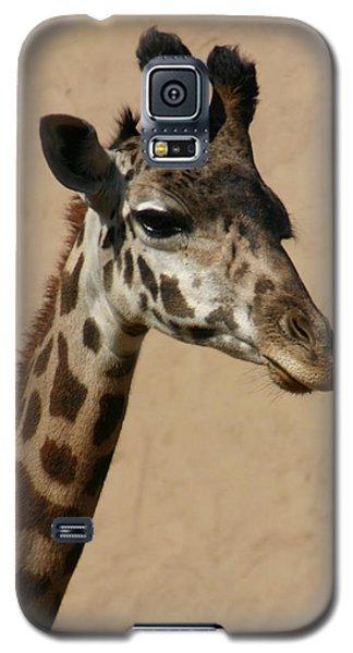 Galaxy S5 Case featuring the photograph Giraffe by Kelly Hazel