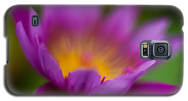 Lily Galaxy S5 Case - Glorious Lily by Mike Reid