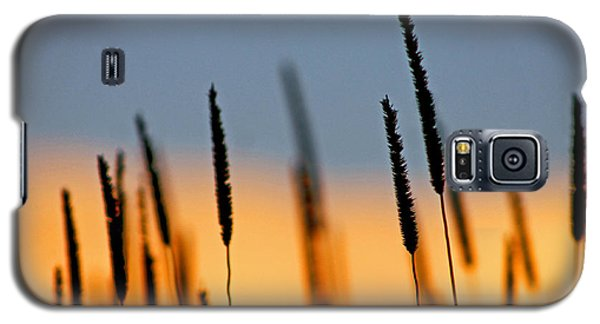 Galaxy S5 Case featuring the photograph Glow by Bruce Patrick Smith