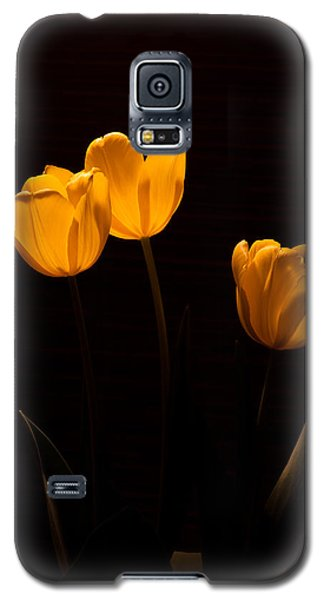 Galaxy S5 Case featuring the photograph Glowing Tulips by Ed Gleichman