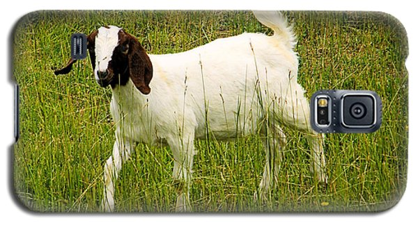 Galaxy S5 Case featuring the photograph Goat Fun by Wendy McKennon