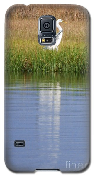 Galaxy S5 Case featuring the photograph Going Going . . . .  by Linda Mesibov