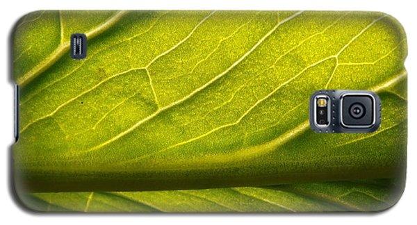 Going Green Galaxy S5 Case by Gerald Strine