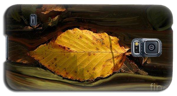 Gold Leaf Galaxy S5 Case by Vilas Malankar