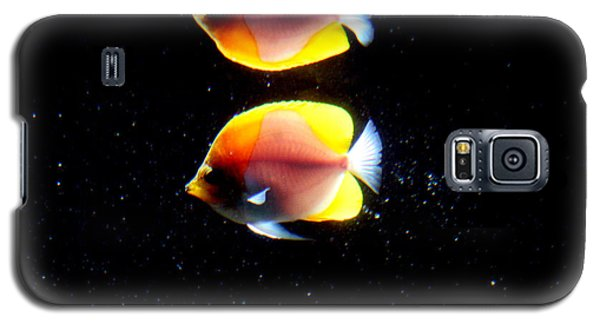 Golden Fish Reflection Galaxy S5 Case