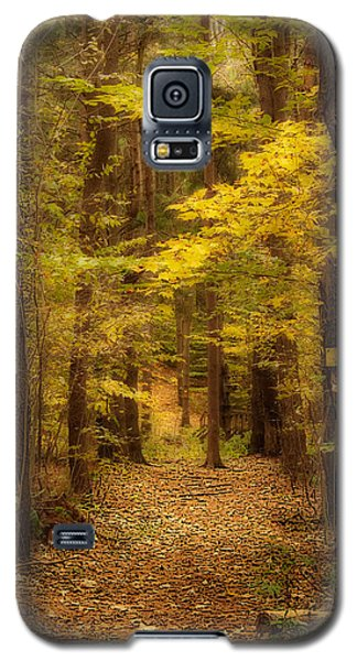 Golden Forest Galaxy S5 Case by Cindy Haggerty