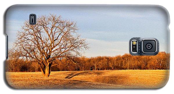 Galaxy S5 Case featuring the photograph Golden Hour Shadows by Rachel Cohen