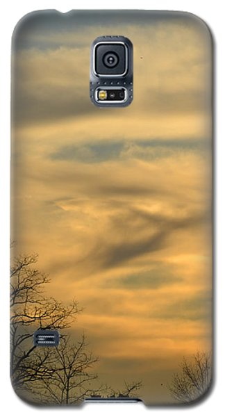 Golden Hue Galaxy S5 Case by Bonnie Myszka