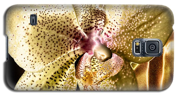 Golden Orchid Galaxy S5 Case by Barbara Middleton