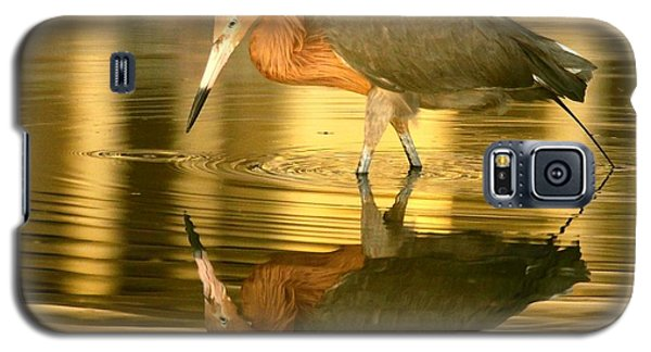 Galaxy S5 Case featuring the photograph Golden Reflection by Myrna Bradshaw
