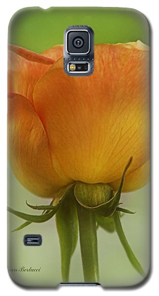 Galaxy S5 Case featuring the photograph Golden Rose by Joan Bertucci