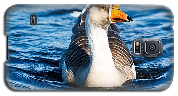 Goose Coming Into Shore  Galaxy S5 Case by Ann Murphy
