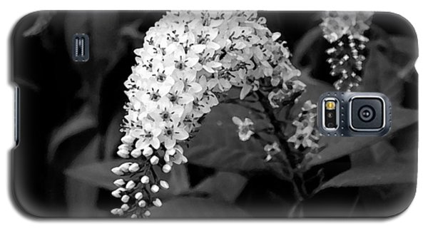 Galaxy S5 Case featuring the photograph Gooseneck Loosestrife by Michael Friedman