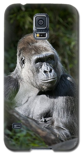Gorilla Galaxy S5 Case