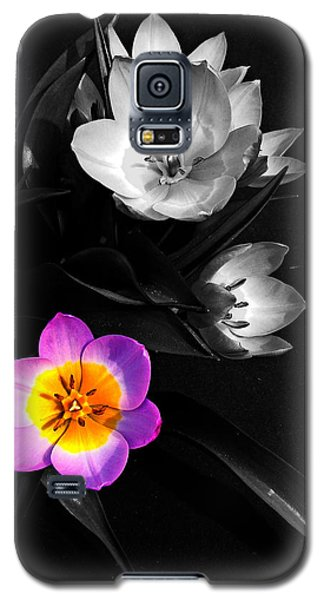 Grabbing The Spotlight Galaxy S5 Case by Nick Kloepping