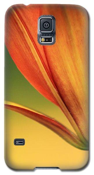 Graceful Galaxy S5 Case