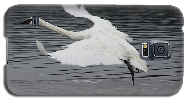 Galaxy S5 Case featuring the photograph Graceful Landing by Cathie Douglas
