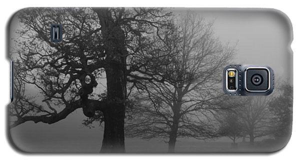 Galaxy S5 Case featuring the photograph Gradual Trees by Maj Seda
