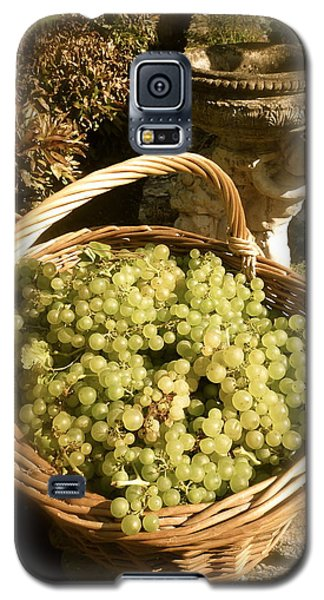 Grape Harvest Galaxy S5 Case by John Colley