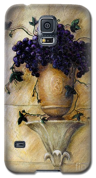 Grapes Galaxy S5 Case by Danuta Bennett