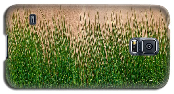 Galaxy S5 Case featuring the photograph Grass And Stucco by David Pantuso